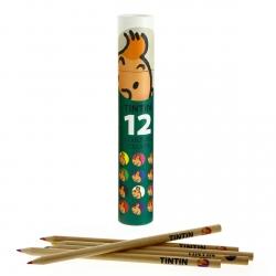 Tubo verde con 12 lápices de colores Las aventuras de Tintín (54783)