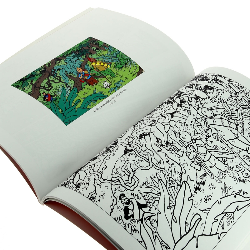 Libro para colorear Las aventuras de Tintín V2 24348 (2016) - BD addik