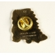 Pin's de Yakari jefe indio dorado (Casterman 92)