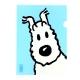 Pochette plastique A4 Les Aventures de Tintin Milou - Bleu clair (15111)