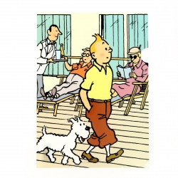 A4 Plastic Folder The Adventures of Tintin and Snowy Walking (15105)