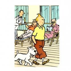 Pochette plastique A4 Les Aventures de Tintin et Milou se promenant (15105)