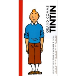 Figura de colección Tintín Librito Nº52 2013 El Profesor Calys 12cm