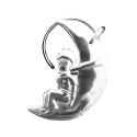 Collection Keychain The Little Prince on the moon Les étains de Virginie (2018)