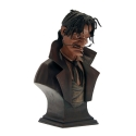 Collectible Bust Attakus Peter Pan, Captain Hook monochrome B303 (2008)