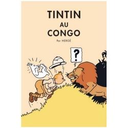 Poster Moulinsart Album de Tintin: Tintin au Congo 22011 (50x70cm)