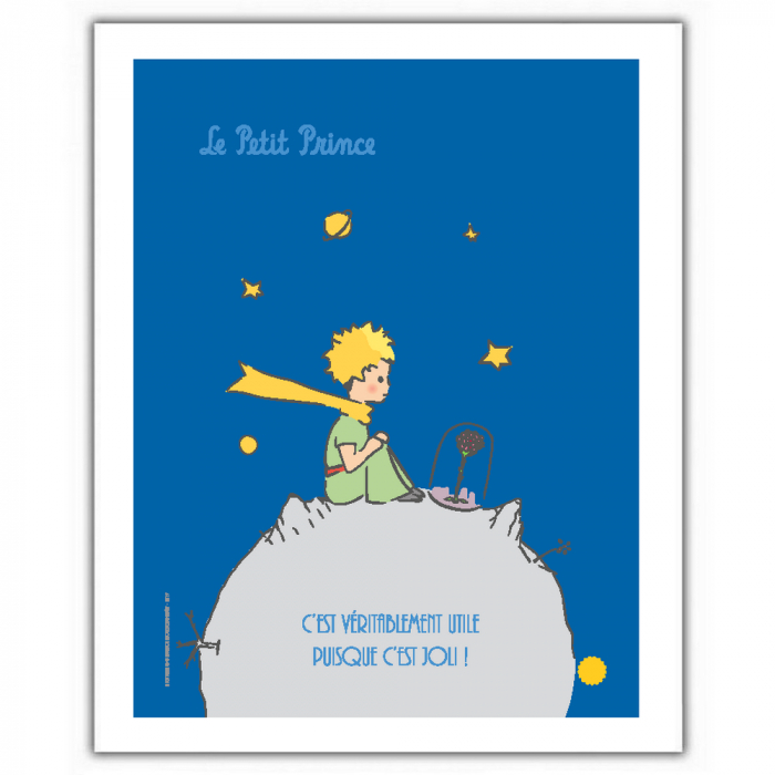 Poster offset The Little Prince looking at her rose (18x24cm)