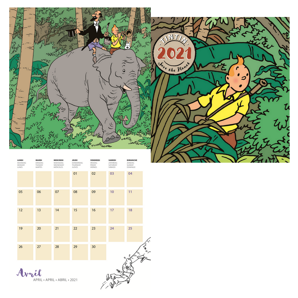 Calendrier Tintin 2021 Calendrier mural 2021 Tintin Save the Pla30x30cm (24442)   BD