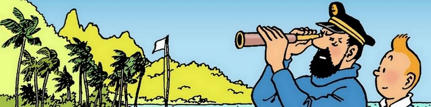 Comic albums Tintin, Asterix, Spirou and Fantasio, Gaston Lagaffe, Blacksad ...